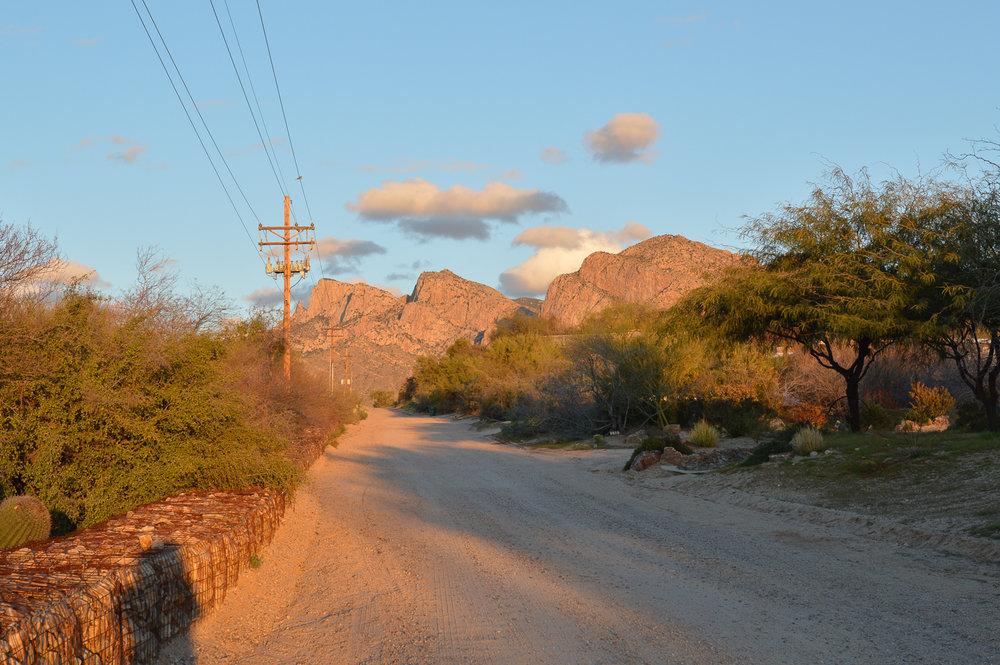 Tucson 2019 (66 of 94).jpg