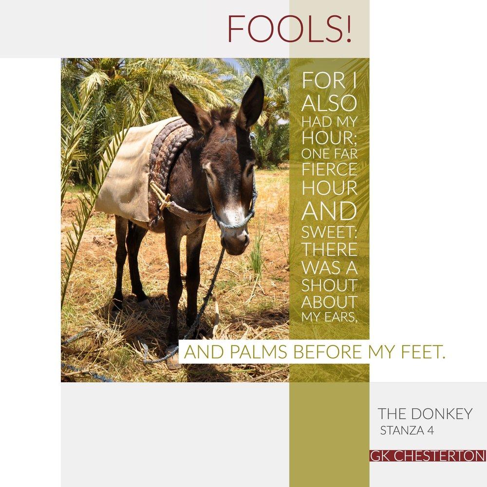 The Donkey 4.jpg