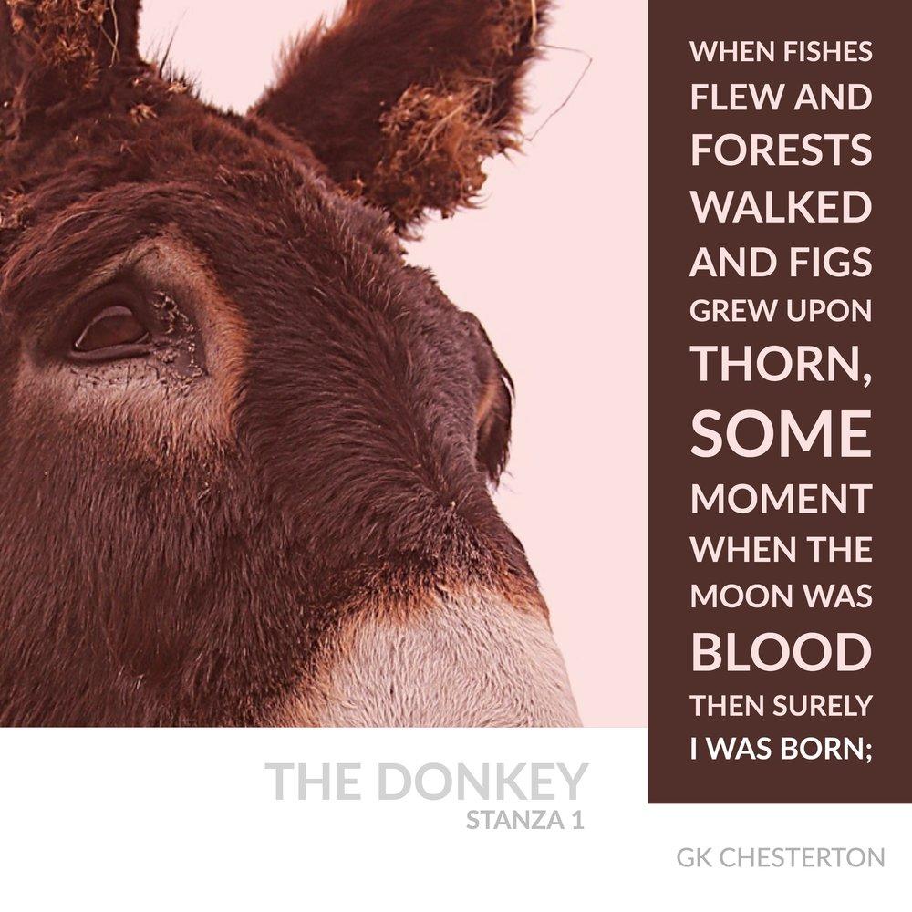 The Donkey 1 Copy (1).jpg