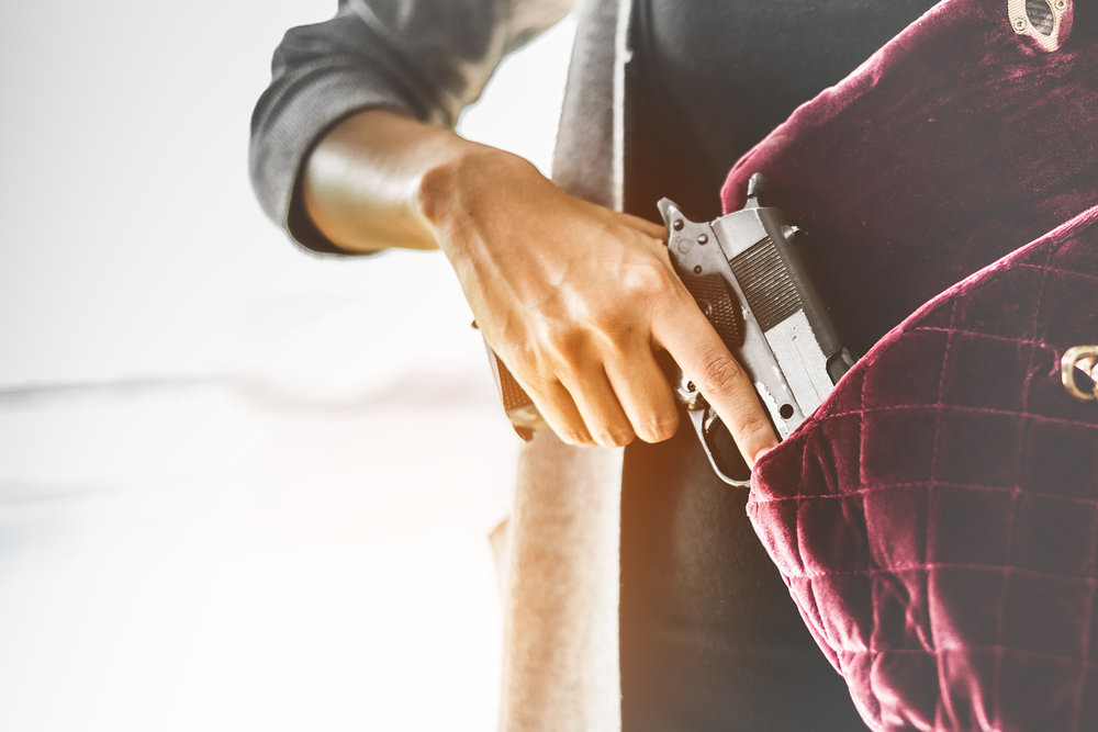 Class: Handgun Safety and Concealed Carry Intro
