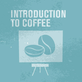 SCAE_Logo_CDS_Introduction_to_Coffee.jpg