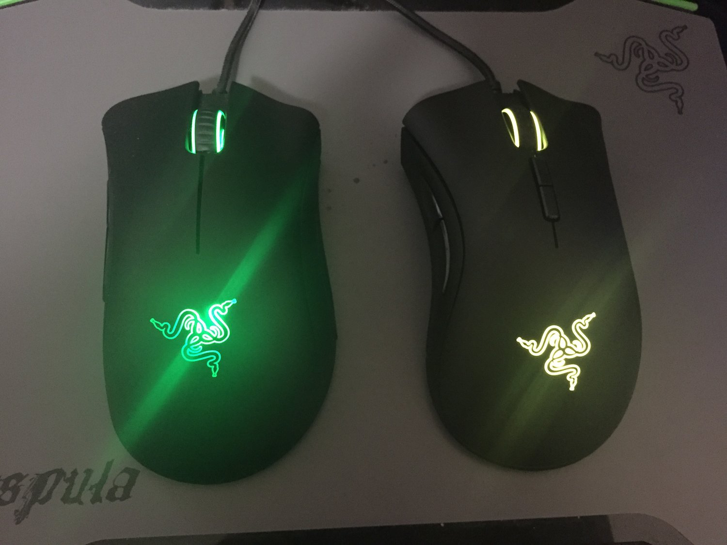 REVIEW - Razer DeathAdder Elite — GameTyrant