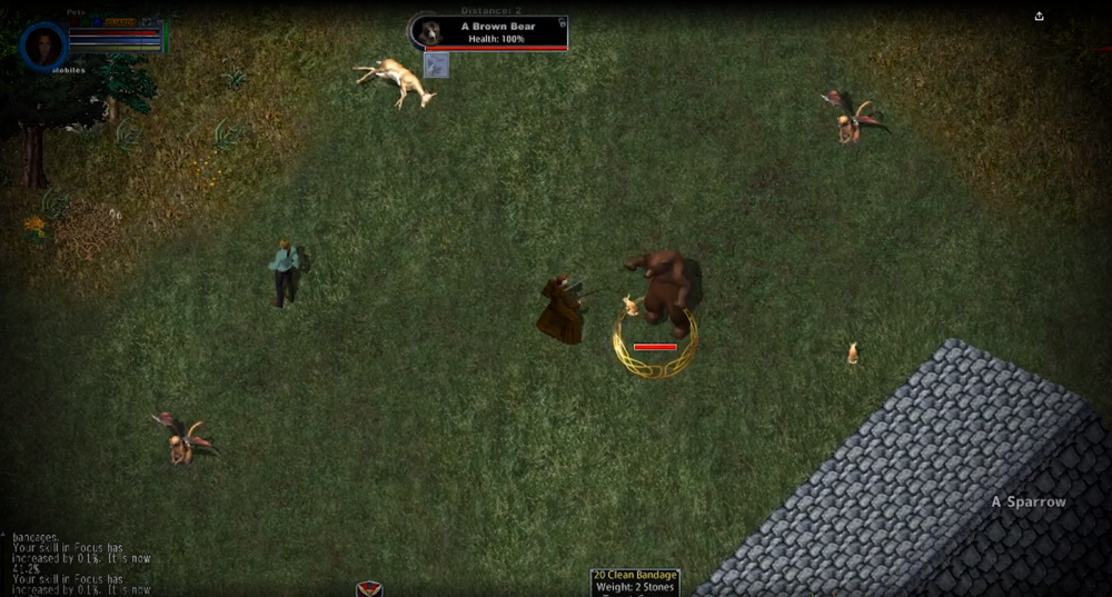 ultima-online3.PNG