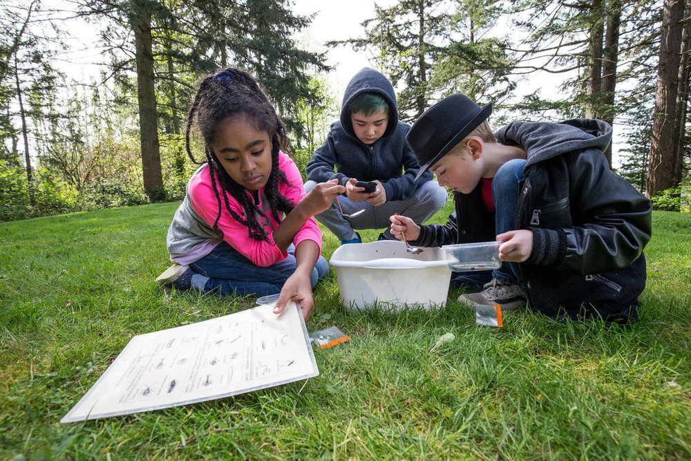 Beverly Elementary fourth-graders take field trip to Hall Lake - May 12, 2018, Everett Herald