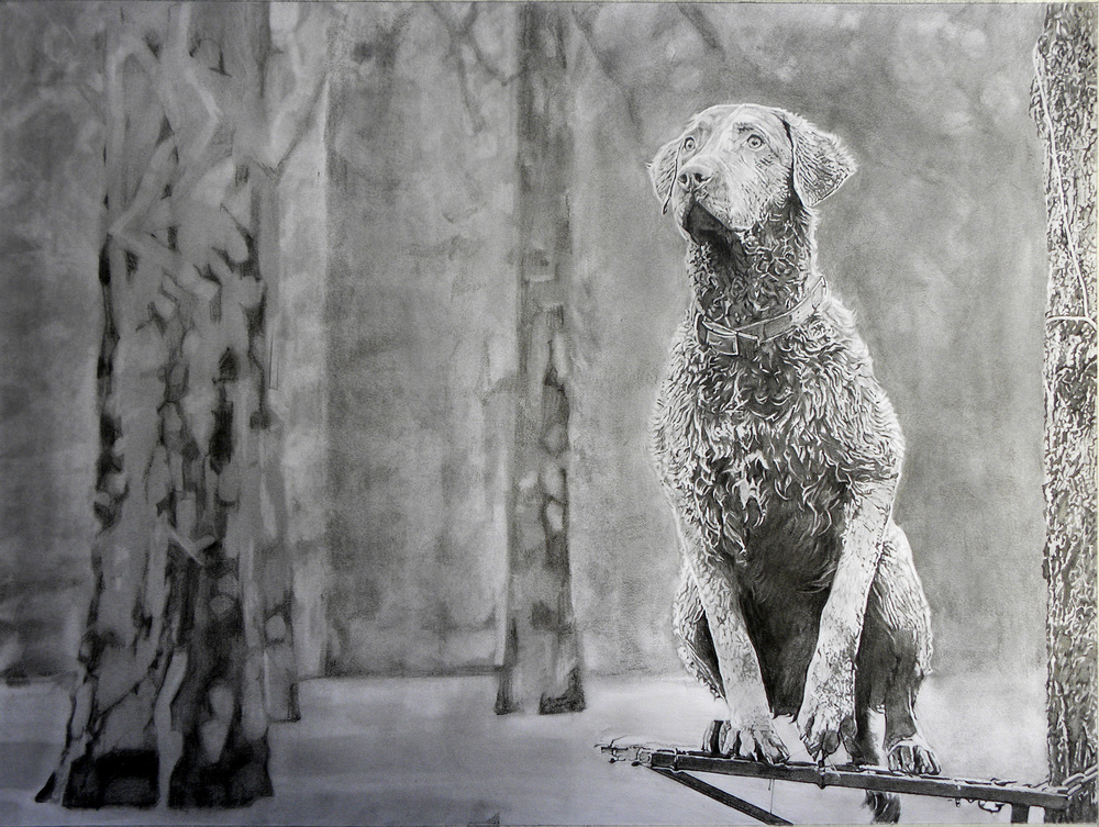 "Chesapeake Bay Retriever Hunting Dog, 18""x24"""