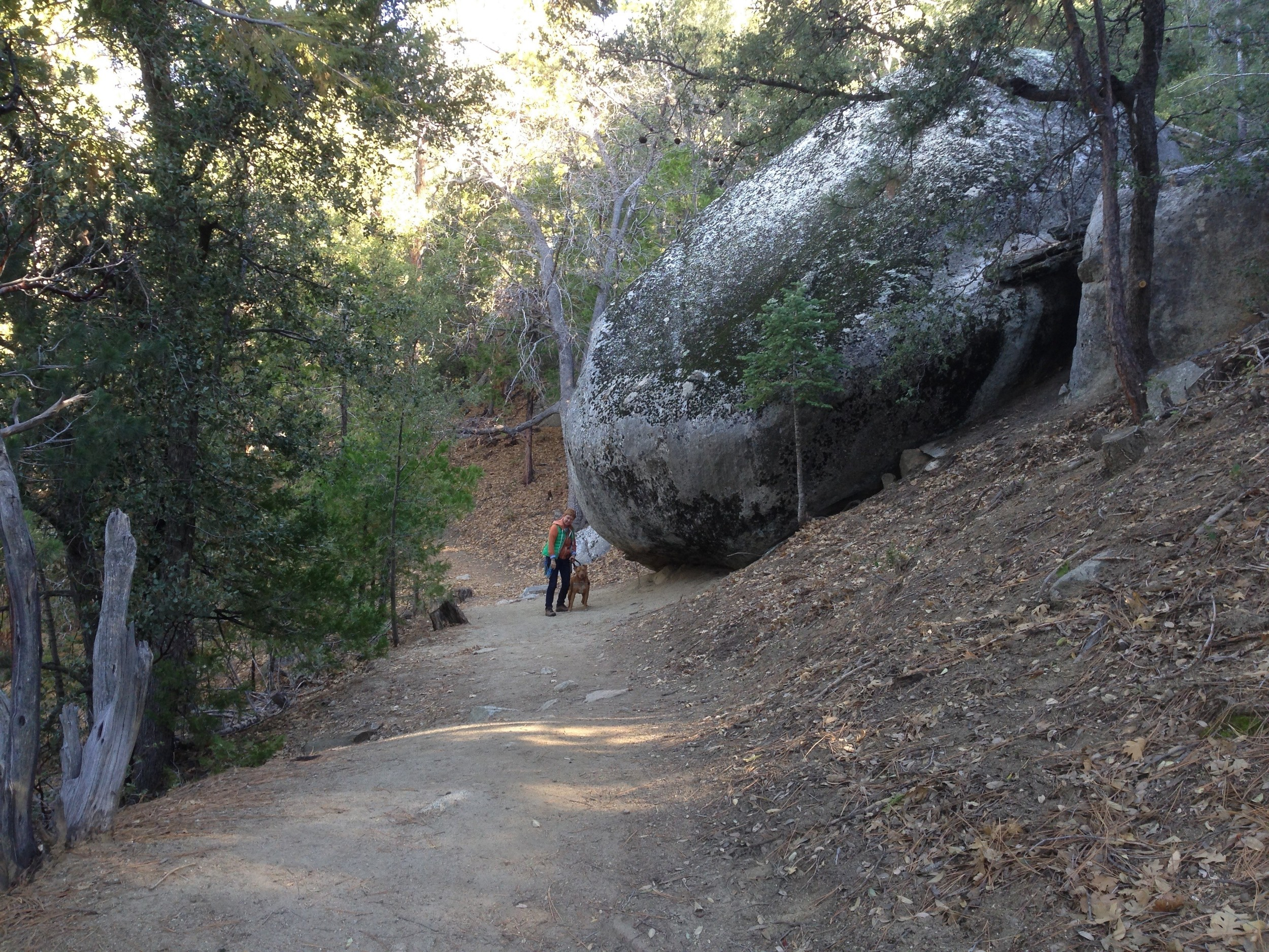 Ernie Maxwell trail in Idyllwild California.  Photo by Martin Pierce Custom Hardware