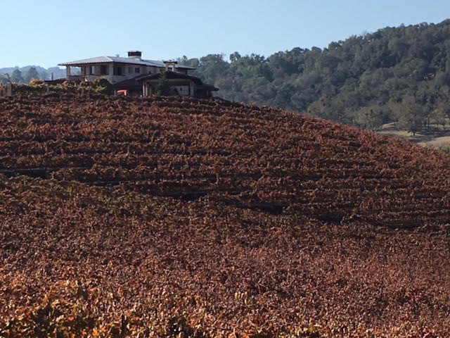 Hammersky Vineyards photo by Martin Pierce Hardware Los Angeles CA  90016