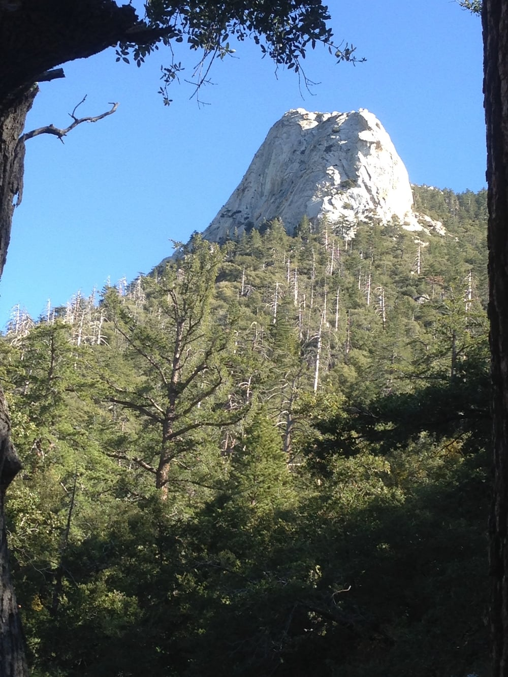 Martin Pierce photo Lily Rock  Idyllwild California