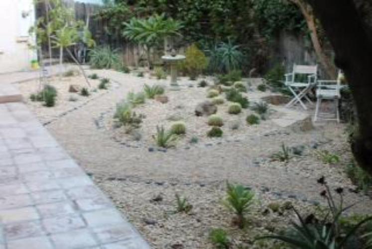 Drought resistant garden Photo by Martin Pierce Hardware Los Angeles CA 90016