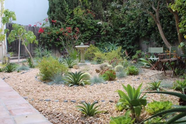 Drought tolerant garden from Martin Pierce Hardware Los Angeles CA  90016