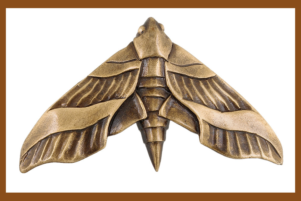 Moths are featured in our animal and insect cabinet pull collection