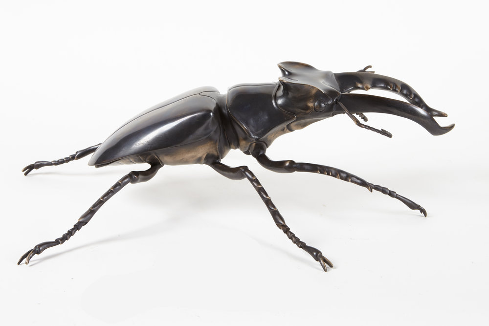 bronze-sculpture-limted-edition-Stag-beetle-side.jpg