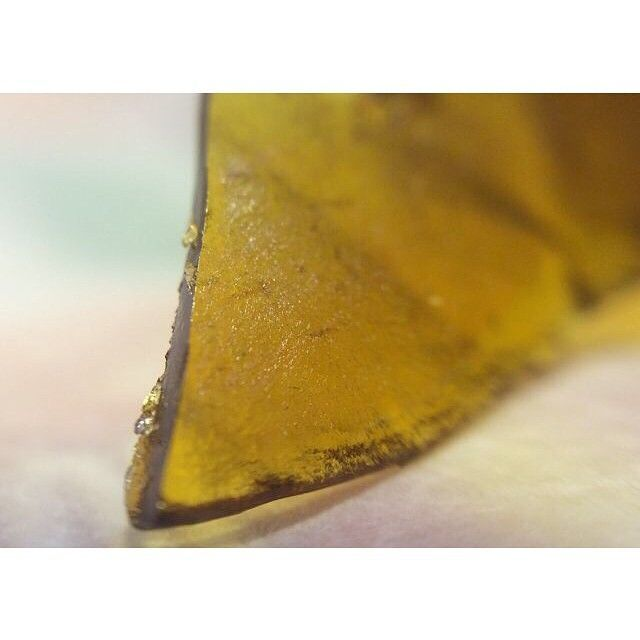 BUGATTI SHATTER!! 🔥🔥🔥🍯🍯🍯🍯 #420 #cannabis #weedstagram #ganja #highsociety #maryjane #kush #highlife #cannabiscommunity #hightimes #high #weedporn #dank #girl #dope #love #instagood #pothead #stayhigh #fun #losangeles #bestbuds #follow #trees #blaze #wonderland #girlswhosmoke #topshelf #WAX #DABS