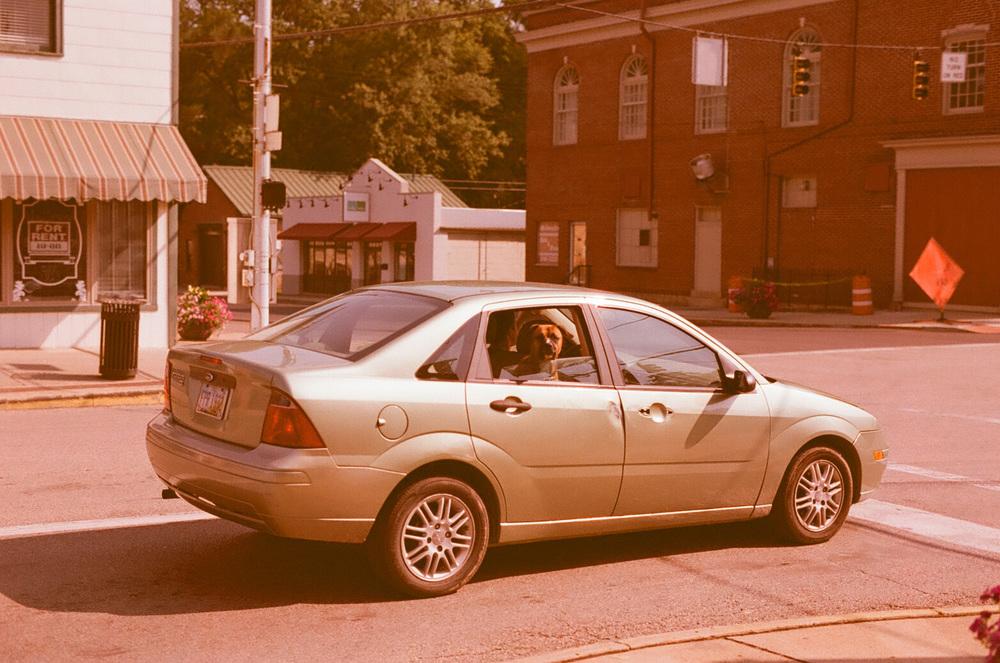 Seattle Film Works Photowalk - Bellbrook, Ohio - Doggie Passenger