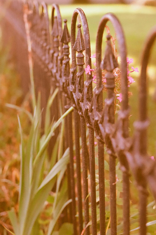 Seattle Film Works Photowalk - Bellbrook, Ohio - Fence