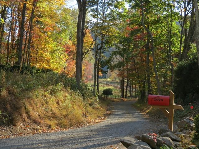 AutumnMailbox.jpeg