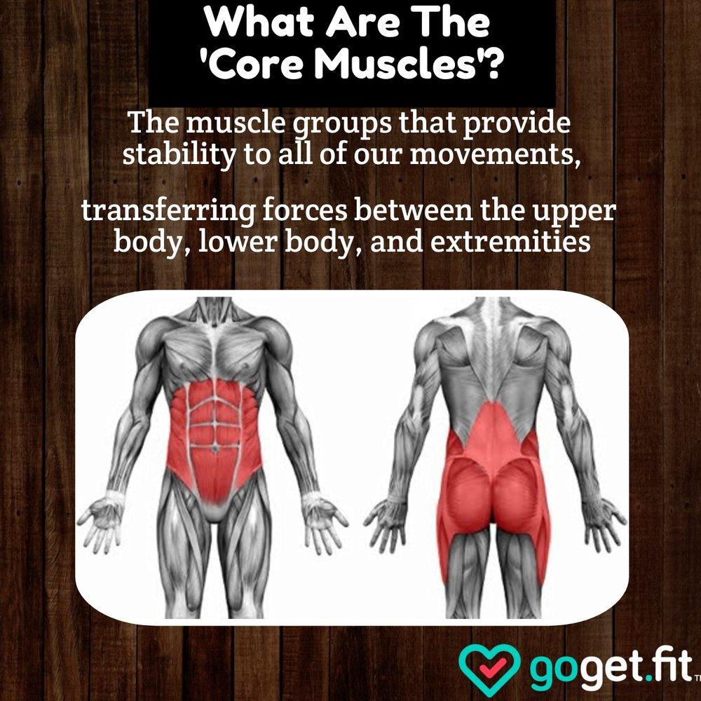 Core+Muscles+%281%29.jpg
