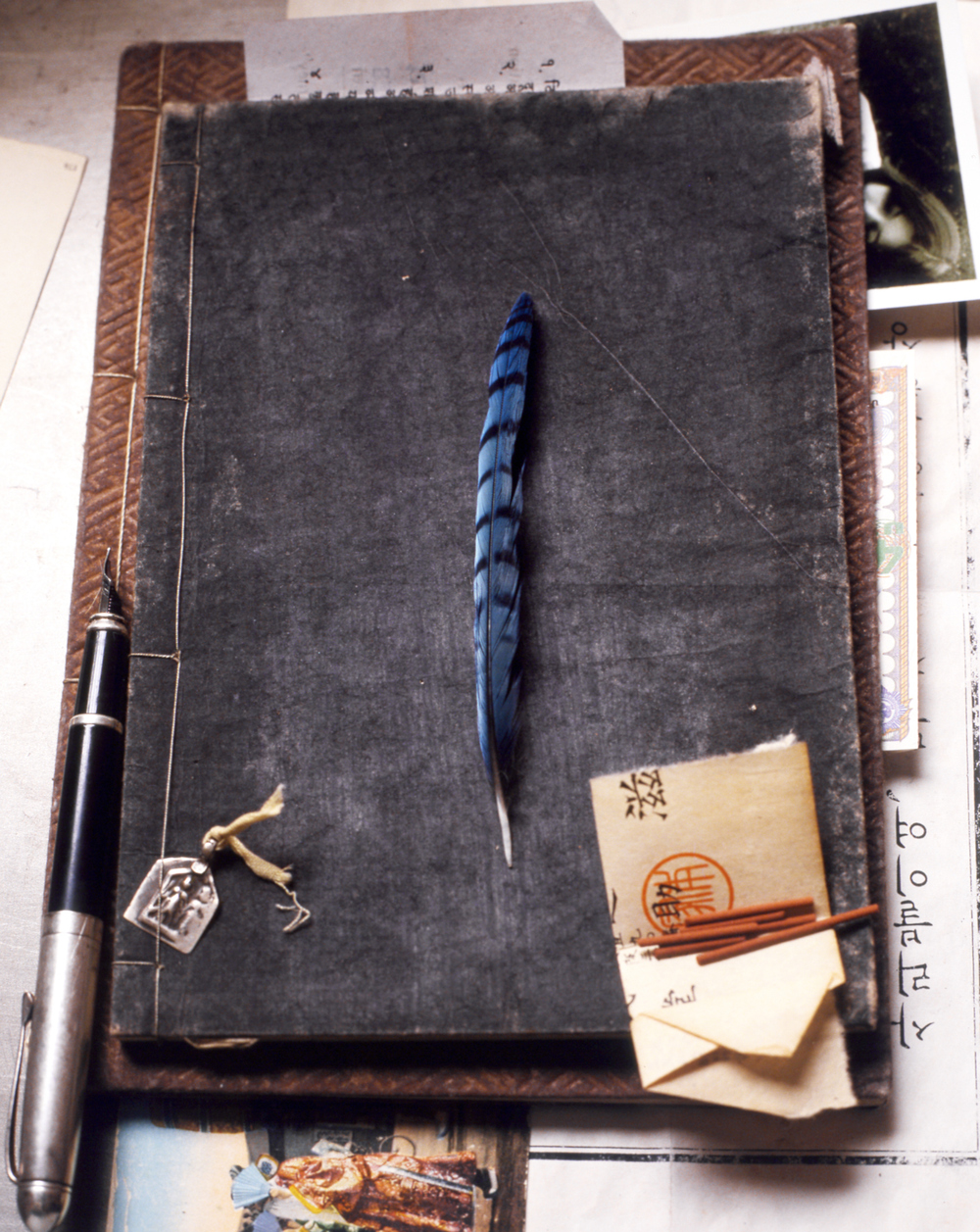 journal w feather.jpg