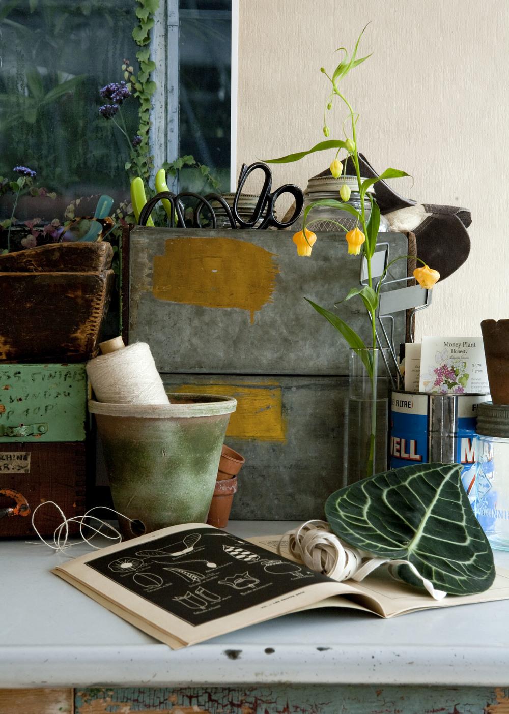 garden journal_16.jpg
