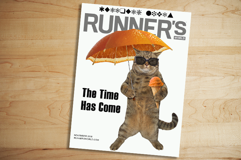 RW_cat_cover.png