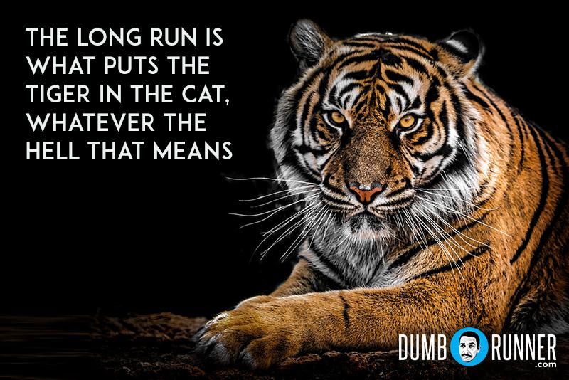 Dumb_Runner_Poster_137.jpg