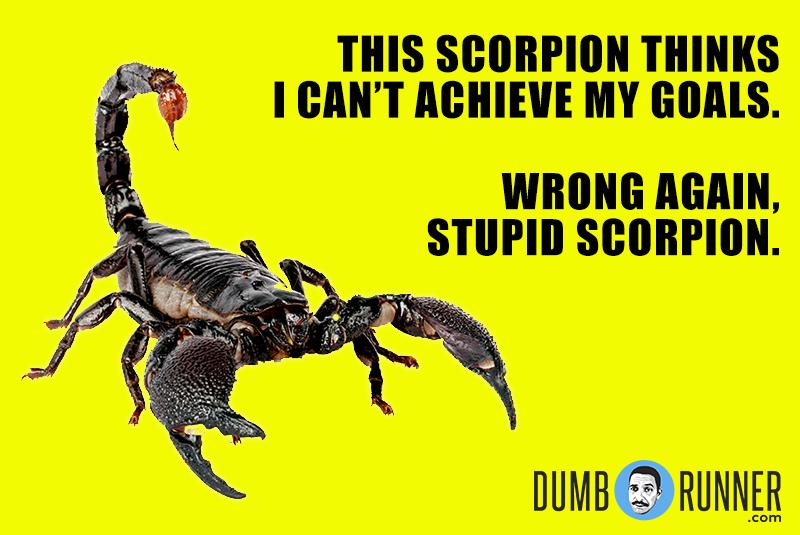 Dumb_Runner_Poster_139.jpg