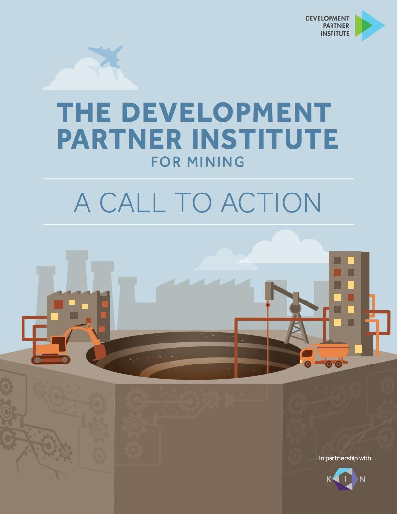 The Development Partner Institute