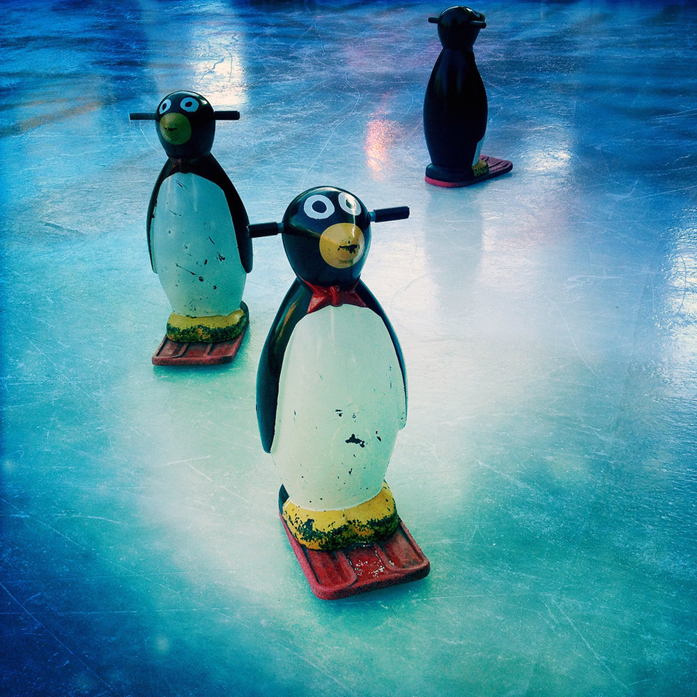 Penguins for skating