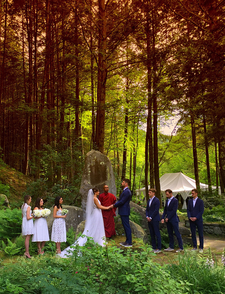 Wedding in the woods