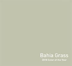 2018coty_bahiagrass_colorcard.jpg