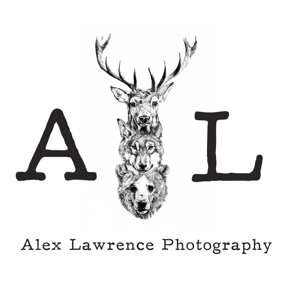 Buckinghamshire + London Wedding Photographer // Alex Lawrence Photography