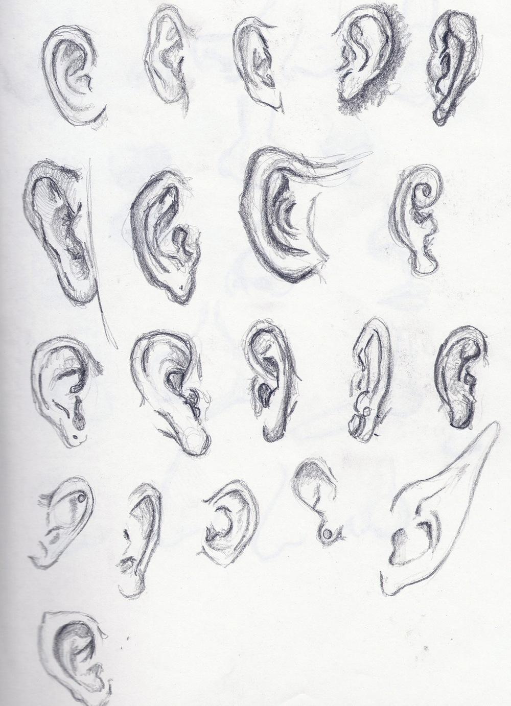 Ear Scan.jpg