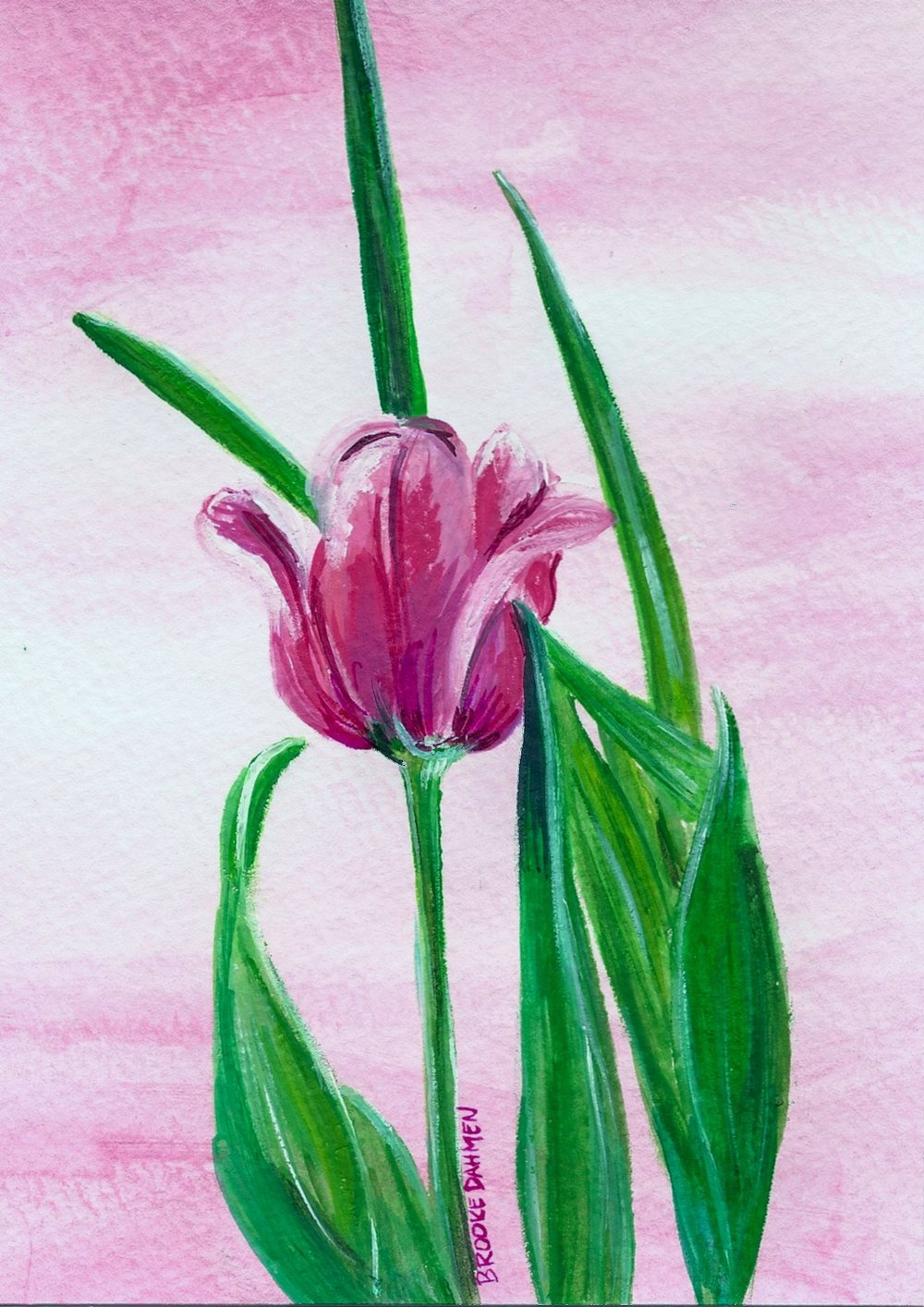 Tulip Ruth.jpg