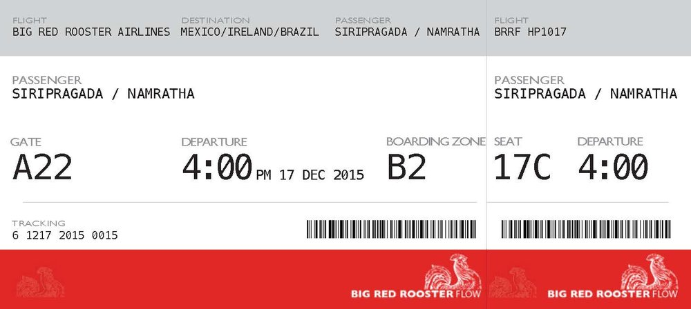 Plane Ticket.jpg