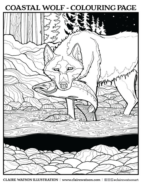 The Coastal Wolves - Colouring Page — CLAIRE WATSON