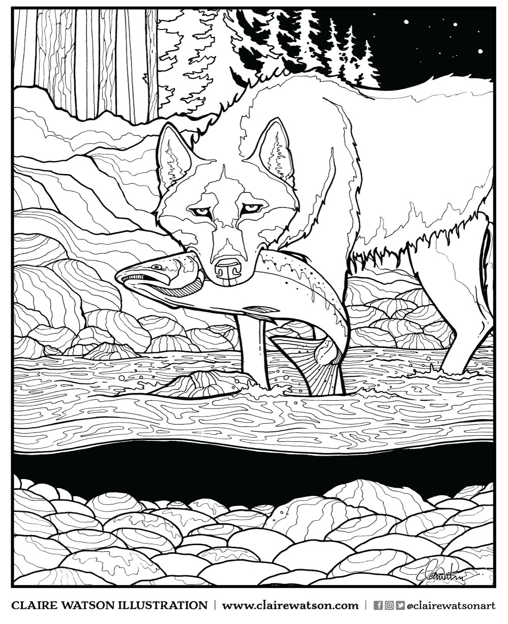 coastal-wolf-colouring-page-claire-watson.jpg
