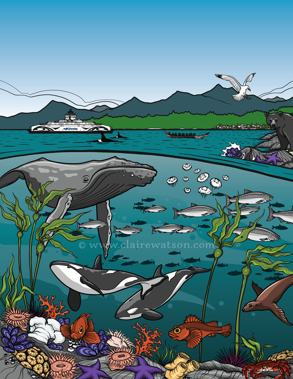 BC Ferries - Sea Forward Activity Book