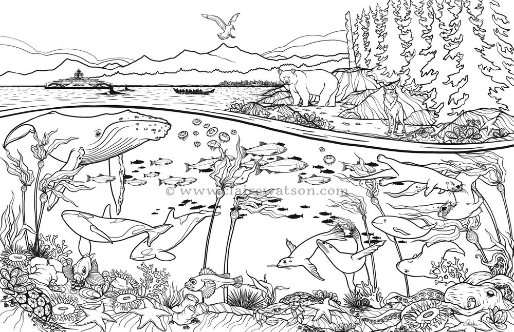 BC Ferries - West Coast Colouring Page