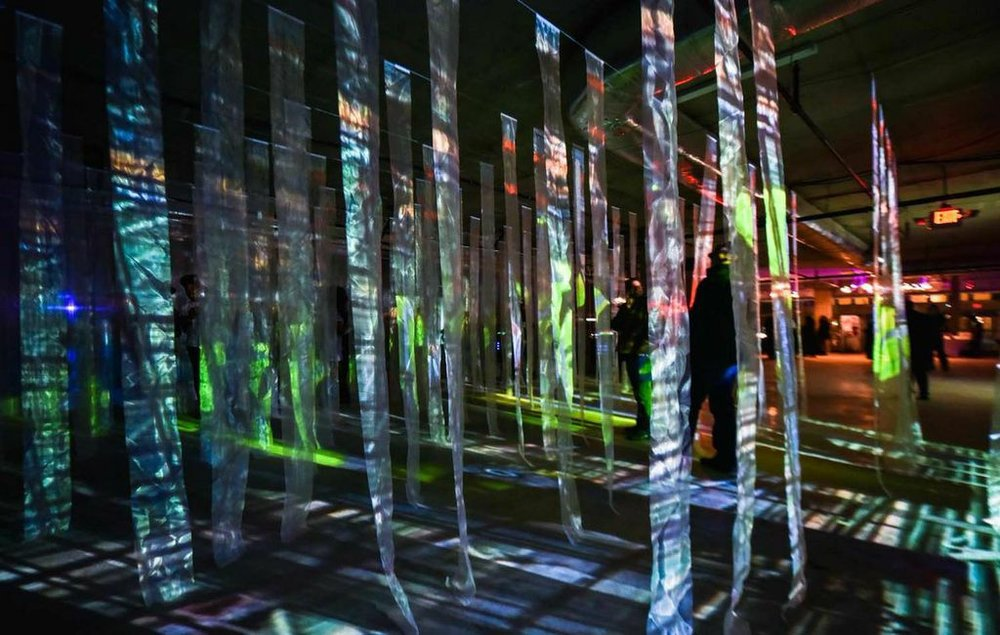 Light Beams Dance_François de Costerd_Illuminus 2014_2.jpg