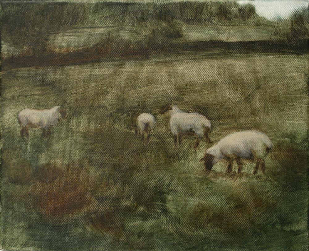 "Sheep Study 1, oil on canvas 30 x 24.5 cm (12"" x 9.5""), 2016"