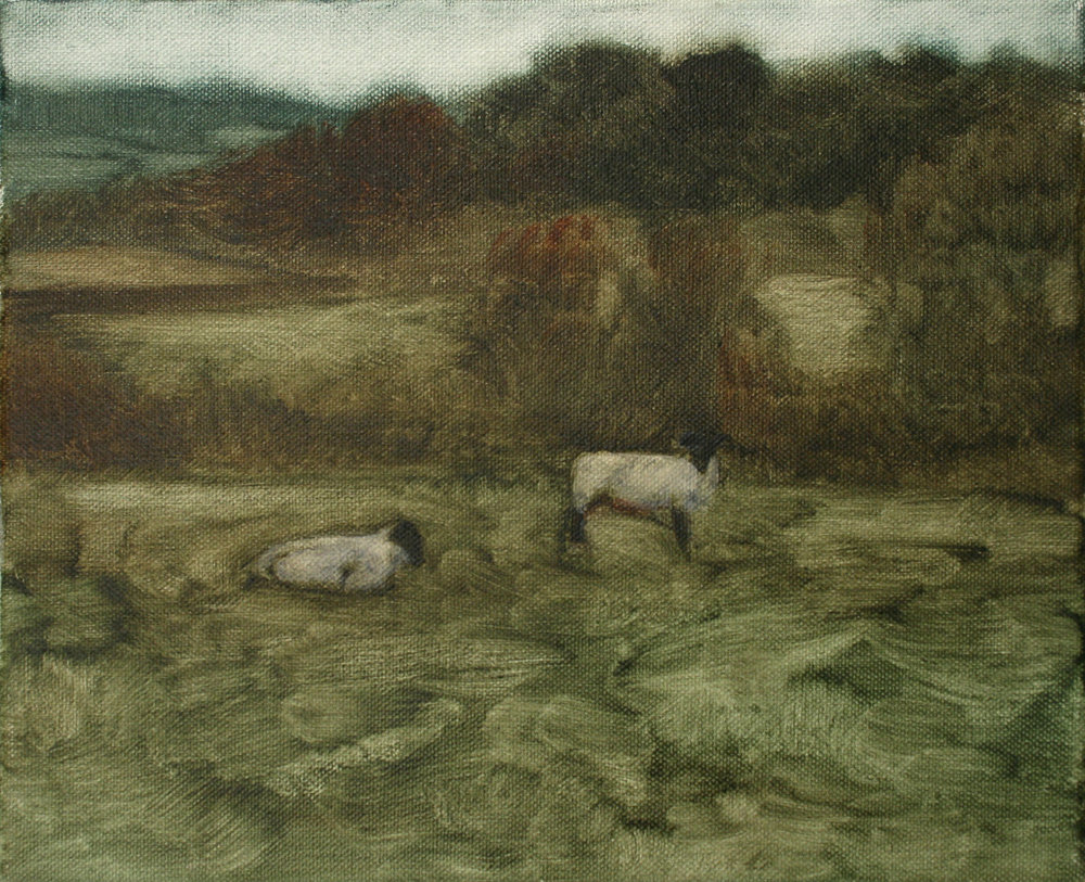 "Sheep Study 4, oil on canvas 30 x 24.5 cm (12"" x 9.5""), 2016"