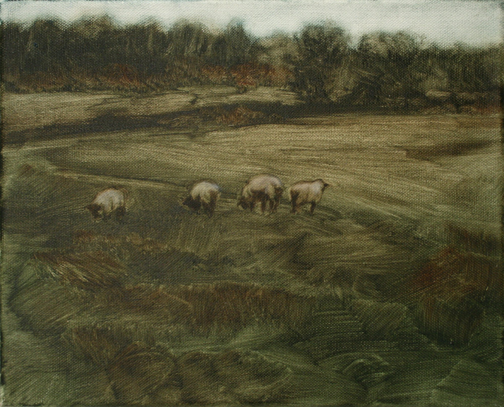 "Sheep Study 8, oil on canvas 30 x 24.5 cm (12"" x 9.5""), 2016"