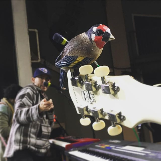 Another successful sound check with our newest bandmate, Larry Birs