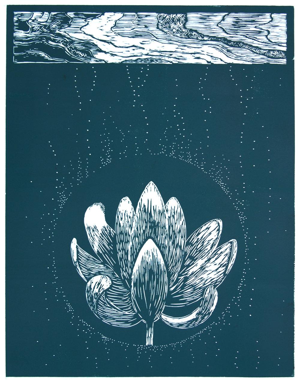 lotus1_1.JPG