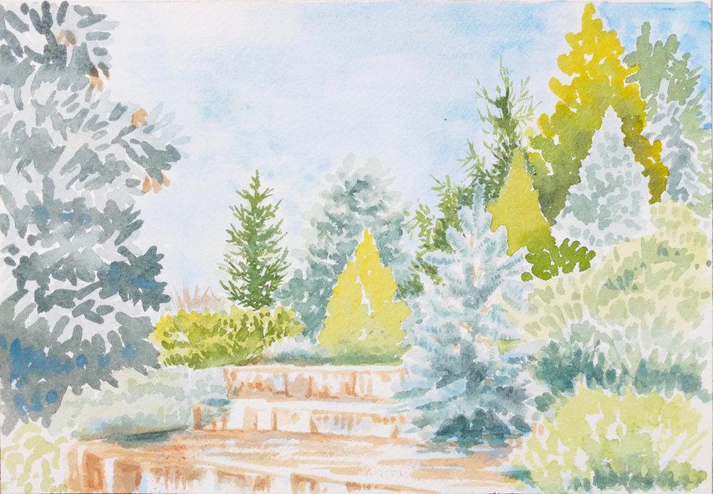 Conifer Garden, Chicago Botanic aArden