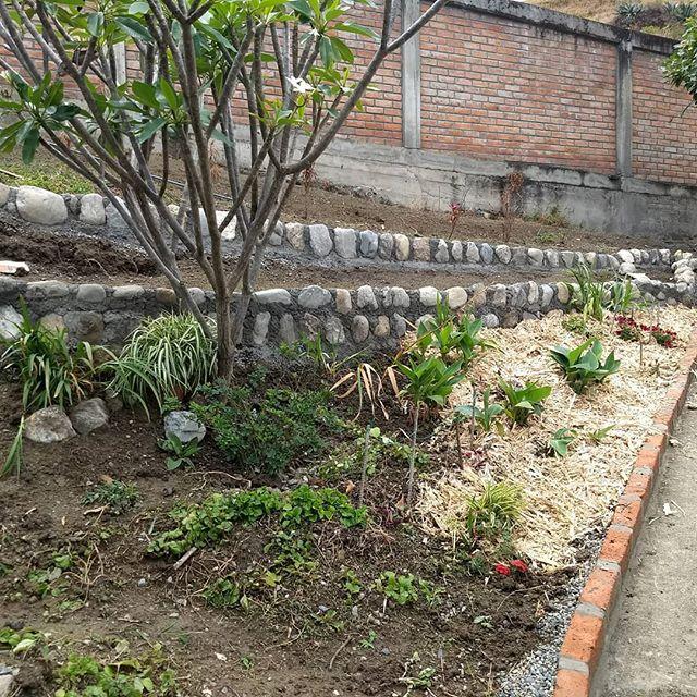 New gardens coming along! #ecuadorlife #ecuador🇪🇨 #organic #gardening