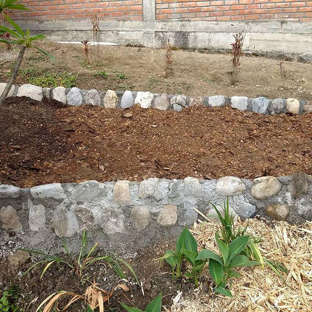 Let it rest for a week, then plant! #ecuadorlife #ecuador🇪🇨 #organic #gardening