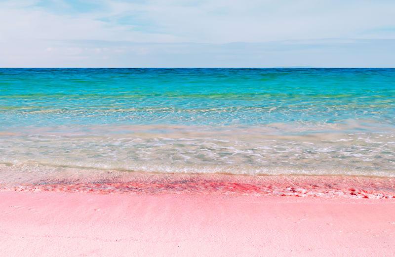 Bermuda Pink Sand Beach.jpg