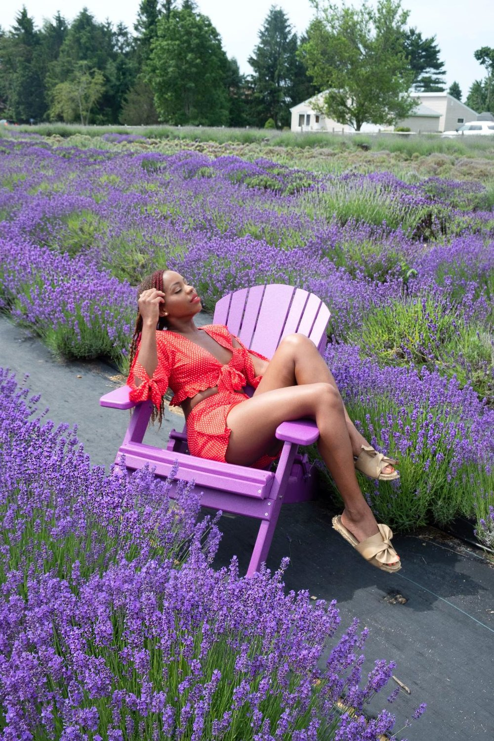 Lavender by the Bay North Fork.jpg
