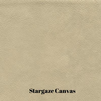 Stargo Canvas.jpg